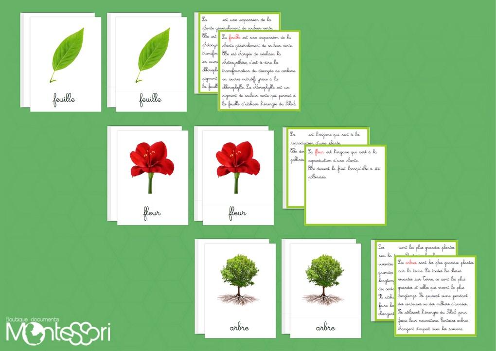 Boutique Documents Montessori